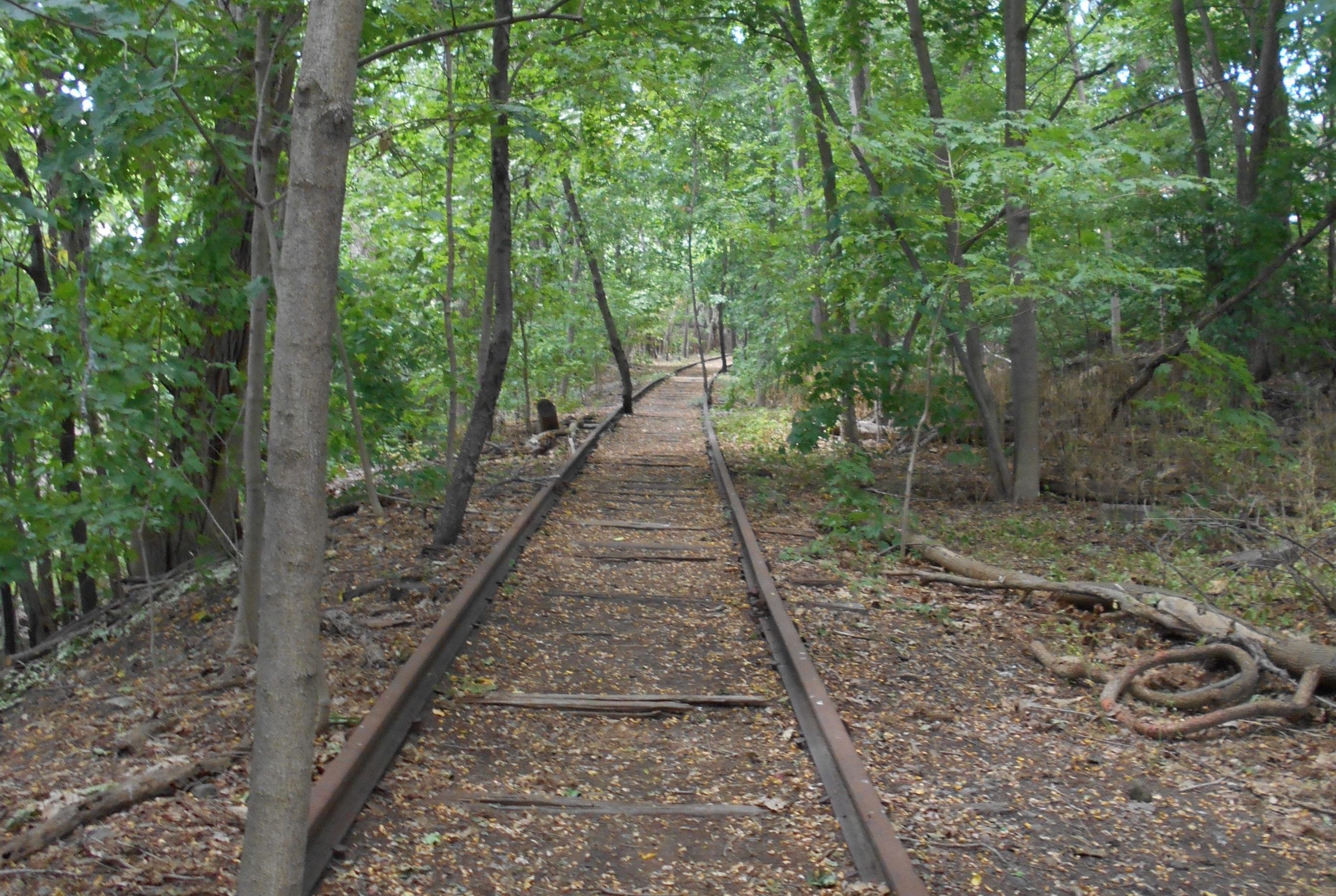 Mass Central Rail Trail railroad tracks